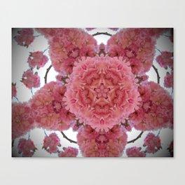 Blossom k5 Canvas Print