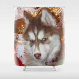 Husky Eyes Shower Curtain