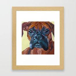 The Boxer Dog Lillibean Framed Art Print