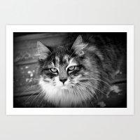 kiki Art Prints featuring Kiki by katio111