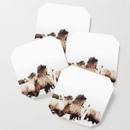 WILD AND FREE 2 - HORSES OF ICELAND Coaster
