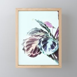 Beautiful Tropical Calathea Foliage Framed Mini Art Print