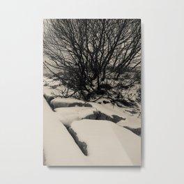 Long Winter Nap Metal Print