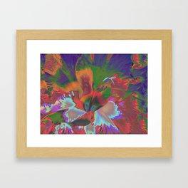 Extreme Gladiolus Framed Art Print