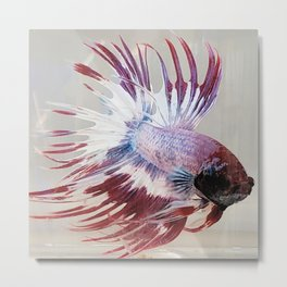 Red Betta Fish Fins Metal Print