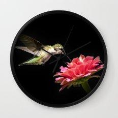 Hummingbird V Wall Clock
