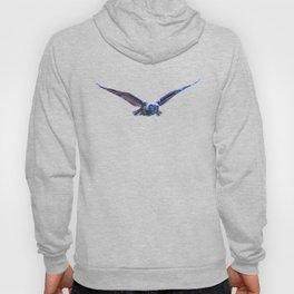 Owl flight Hoody
