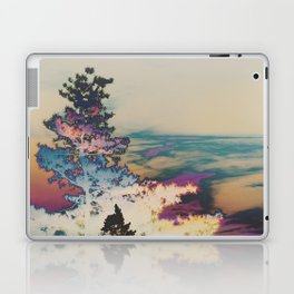 297 | west texas Laptop & iPad Skin