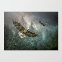 Valley of the eagles Canvas Print