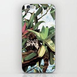 Ring tailed Coati iPhone Skin