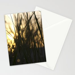 Dune grass past dawn Stationery Cards
