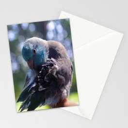 Peter the Parrotlet Stationery Cards