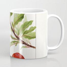 Plums (Prunus Domestica) (1895) by Deborah Griscom Passmore Coffee Mug