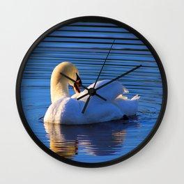 Swan Preening Wall Clock