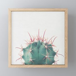 Ferocactus Framed Mini Art Print