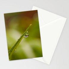 Morning Raindrop Stationery Cards