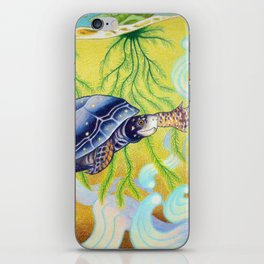 Swimming Spotted Turtle, Turtle Art iPhone Skin