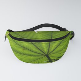 The great Yagrumo tree leaf -  El Yunque rainforest PR Fanny Pack