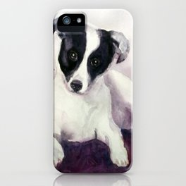 A stray dog up for adoption iPhone Case