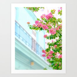 Colonial Havana Architecture with Pink Bougainvillea Art Print