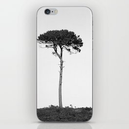 Nature in black and white iPhone Skin