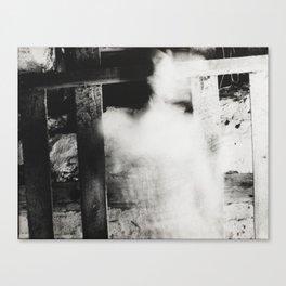 Continuities VI Canvas Print