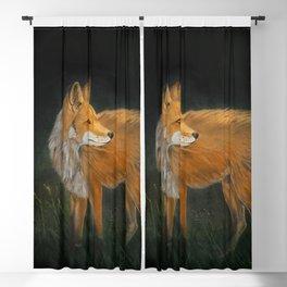 Curious Red Fox Blackout Curtain