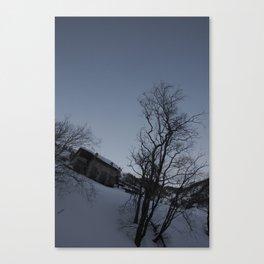 trees... Canvas Print