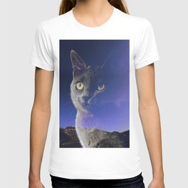 Cat and night sky T-shirt