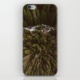 Kokanee Creek iPhone Skin