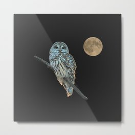Owl, See the Moon (sq) Metal Print