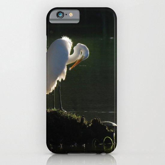Egret at Evening iPhone & iPod Case