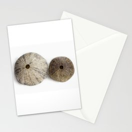 Sea Urchin Shells Stationery Cards
