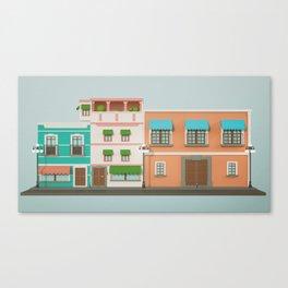 16S A Canvas Print