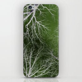 Fall Into The Open iPhone Skin