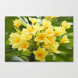Happy Glorious Yellow Flowers Canvas Print