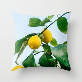 Amalfi Coast Lemons III Throw Pillow