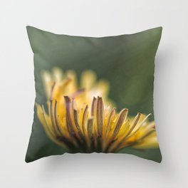 It touches the colors Throw Pillow