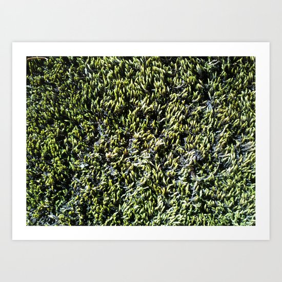 moss texture Art Print