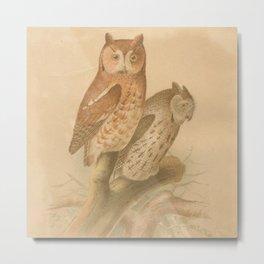 Vintage Bird Neck Gator Owls Vintage Birds Metal Print