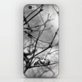 Claddagh Ring iPhone Skin