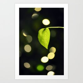 Leaf & light Art Print