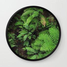 New Zealand ferns Wall Clock