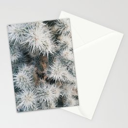 Cactus in Joshua Tree Stationery Cards