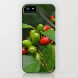 Spice Bush iPhone Case