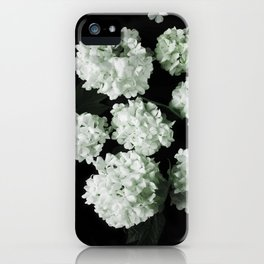 White lilac 5 iPhone Case