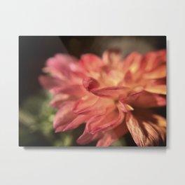 Blooming Sunset Metal Print