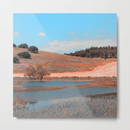 Summer landscape in blue and copper Metal Print