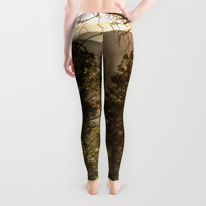Mountain Forest New Mexico - Nature Photography Leggings