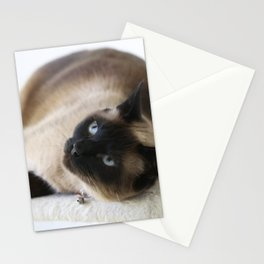 Sulley, A Siamese Cat Stationery Cards